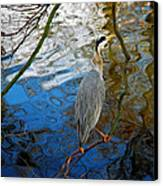 Crane Perching 1 Canvas Print by John Magnet Bell