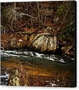 Creek Canvas Print by Mario Celzner