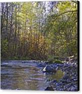 Creek Of Native Times Canvas Print by Tim Rice