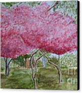 Crepe Myrtles Canvas Print by Katie Spicuzza