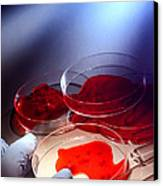 Crime Lab Canvas Print