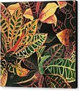 Croton Leaves Canvas Print