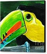 Curious Toucan Canvas Print by Laura Charlesworth