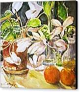 Cyclamen With Tangerines And Kiwi Canvas Print