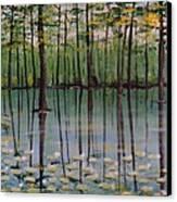 Cypress Garden Canvas Print by Richard Goohs