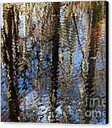 Cypress Reflection Nature Abstract Canvas Print