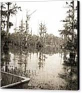 Cypress Swamp Canvas Print by Scott Pellegrin