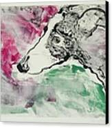 Cyrus Canvas Print