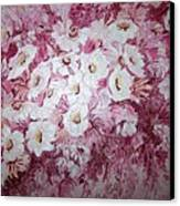 Daisy Blush Canvas Print