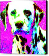 Dalmation Dog 20130125v1 Canvas Print by Wingsdomain Art and Photography
