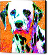 Dalmation Dog 20130125v2 Canvas Print by Wingsdomain Art and Photography