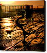 Dance Dance Dude Canvas Print by Anthony Bean