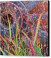 Dance Of The Wild Grass Canvas Print