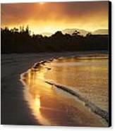 Dare To Shine Canvas Print by Lee Stickels