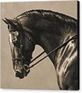 Dark Dressage Horse Aged Photo Fx Canvas Print by Crista Forest