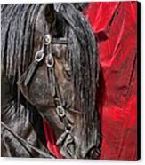 Dark Horse Against Red Dress Canvas Print