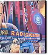 Dave Matthews And Tim Reynolds At Radio City Canvas Print