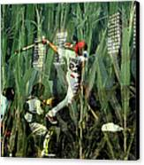 David Freese Canvas Print by John Freidenberg