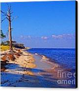 Day At The Beach Canvas Print by Annette Allman