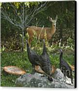 Deer And Wild Turkeys Canvas Print