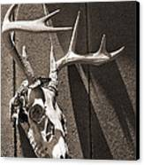 Deer Skull In Sepia Canvas Print by Brooke T Ryan
