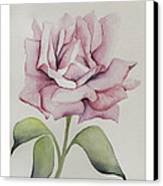 Delicate Dance Canvas Print by Nancy Edwards