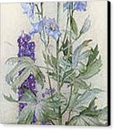 Delphiniums Canvas Print by James Valentine Jelley