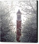 Denny Chimes Foggy Blossoms Canvas Print by Ben Shields
