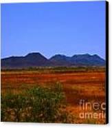 Desert Field Canvas Print by Rebecca Christine Cardenas