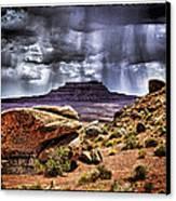 Desert Rain Canvas Print by David Neely