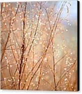Dewdrop Morning Canvas Print