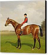 Diamond Jubilee Winner Of The 1900 Derby Canvas Print