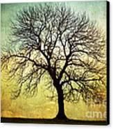 Digital Art Tree Silhouette Canvas Print by Natalie Kinnear