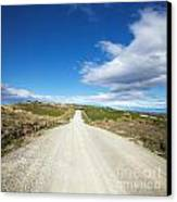 Dirt Road Otago New Zealand Canvas Print by Colin and Linda McKie
