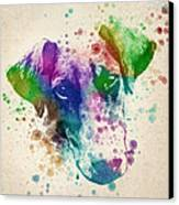 Doberman Splash Canvas Print
