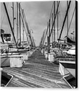Dock Life Canvas Print