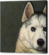Dog-nature 9 Canvas Print