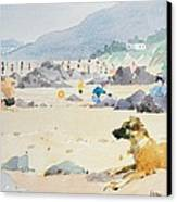 Dog On The Beach Woolacombe Canvas Print by Lucy Willis