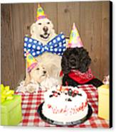 Doggy Birthday Party Canvas Print by Jan Tyler