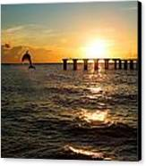 Dolphin Jumping Out Of The Sea In Florida Canvas Print by Fizzy Image