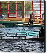 Dolphin Show - National Aquarium In Baltimore Md - 1212107 Canvas Print by DC Photographer