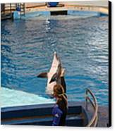 Dolphin Show - National Aquarium In Baltimore Md - 1212145 Canvas Print by DC Photographer