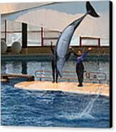 Dolphin Show - National Aquarium In Baltimore Md - 1212273 Canvas Print by DC Photographer