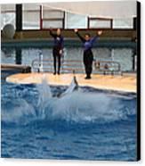 Dolphin Show - National Aquarium In Baltimore Md - 1212278 Canvas Print