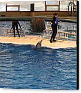 Dolphin Show - National Aquarium In Baltimore Md - 121246 Canvas Print by DC Photographer