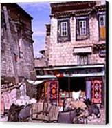 Donkeys In Jokhang Bazaar Canvas Print
