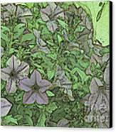 Donovan's  Garden Canvas Print by Mark Herman