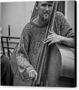 Double Bass Player Canvas Print by David Morefield