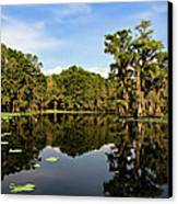 Down In The Bayou Canvas Print