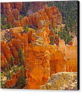 Down Into Bryce Canvas Print by Jeff Swan